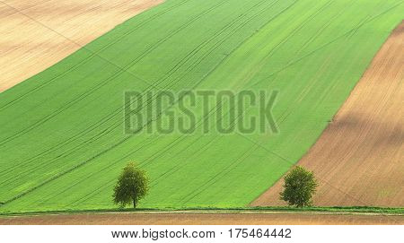 Green And Brown Agricultural Fields