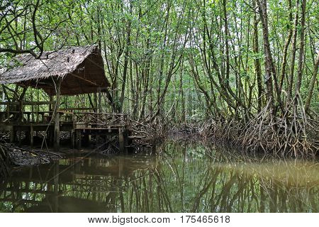 Thai traditional pavilion by the canal in mangrove forest, Trat Province, Thailand