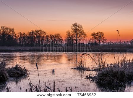 Houses near Kalenberg during sunrise in wintertime with snow trees and lake in National Park De Weerribben-Wieden in The Netherlands.