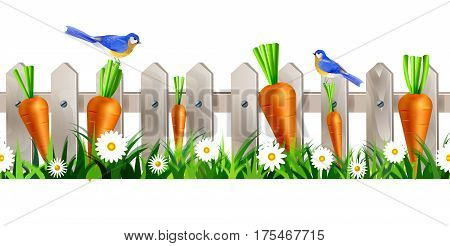 Green Grass and white wooden fence seamless isolated clip art vector on white with orange carrots and bluebirds