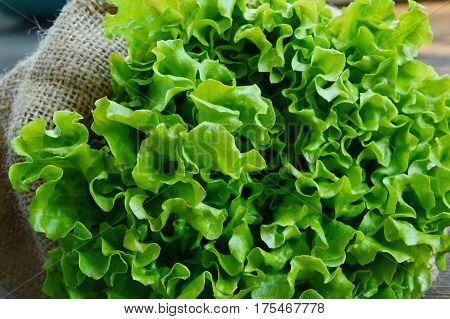Lettuce in sack bag on wooden background
