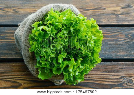 Lettuce in sack bag on wooden background