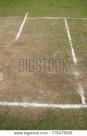 Well worn cricket crease showing the white line markings holes for the stumps and worn area where the bowler runs.