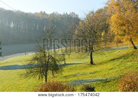 Morning in autumn with Light from the sun melts ice on the grass.