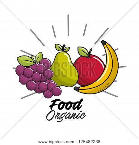 vegan food icon stock, vector illustration design image