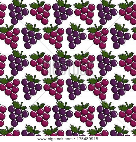 grapes background icon stock, vector illustrtion image design