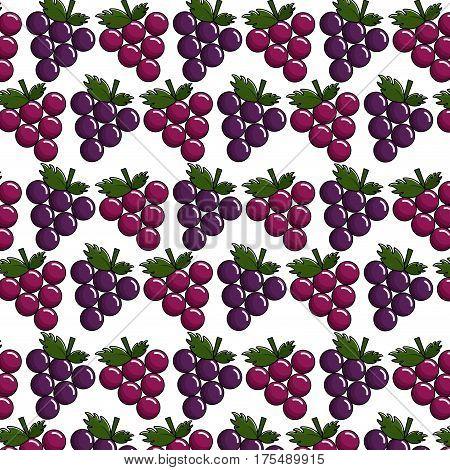grapes background icon stock, vector illustrtion image design