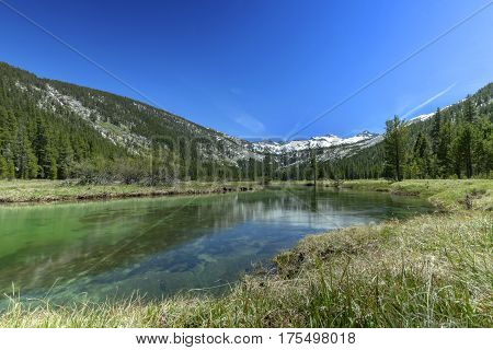 Mt. Lyell Flow - A flowing river from melting snow waters of Mt. Lyell in Yosemite National Park.