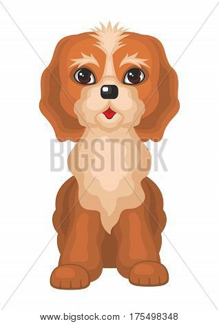Cockerpoo. Vector image of a cute purebred dogs in cartoon style.
