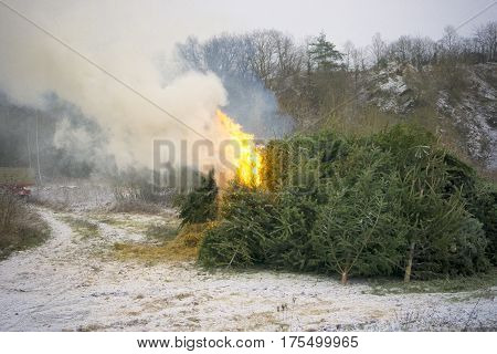 Christmas tree burning with Smoke. Outdoor Shot