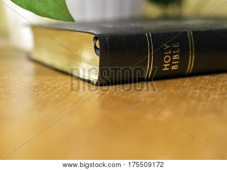 Holy bible lying on wooden table beside plant golden glow background Christian concept