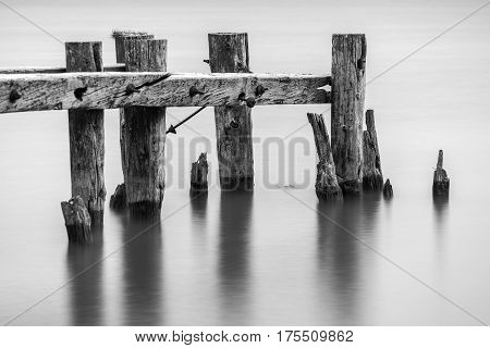 End of an old broken pier closeup of posts standing in calm tranquil water black and white