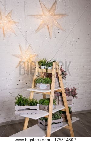 wooden stairs, wooden ladder. wooden rack with shelves with wooden boxes and vases with plant and flowers. Decoration shop