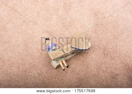 Woman Figurine Trapped In A Clothespin
