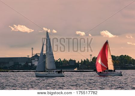 Sailboat Regatta On Daugava River