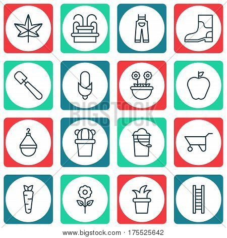 Set Of 16 Holticulture Icons. Includes Taste Apple, Desert Plant, Garden Clothes And Other Symbols. Beautiful Design Elements.