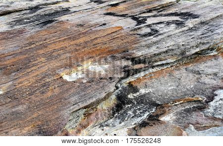 The close up of rock surface. Abstract natural background texture of stone with red colour.