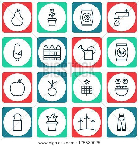 Set Of 16 Plant Icons. Includes Bailer, Bush Pot, Duchess And Other Symbols. Beautiful Design Elements.