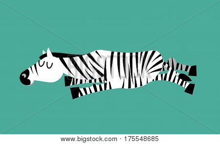 Sleeping Zebra. Animal Sleeps. Sleepy Wild Beast