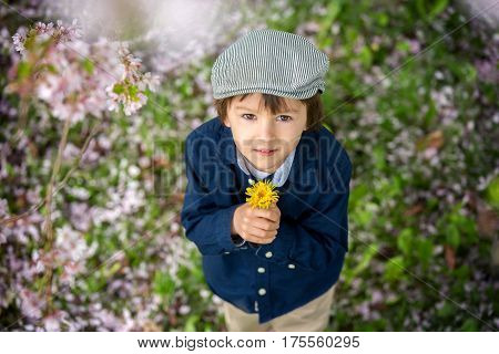 Beautiful Portrait Of A Young Preschool Child Holding Flower
