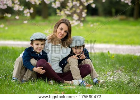 Mother With Two Children, Boys, Reading A Book In A Cherry Blossom Garden