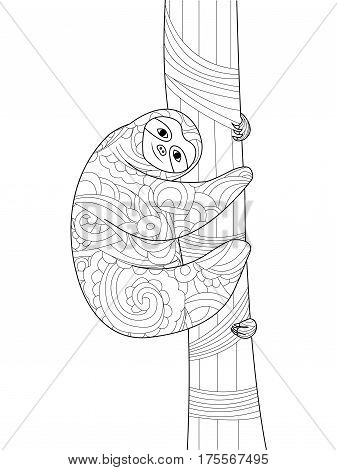 Sloth on a branch coloring book for adults vector illustration. Anti-stress coloring for adult. Zentangle style. Black and white lines. Lace pattern