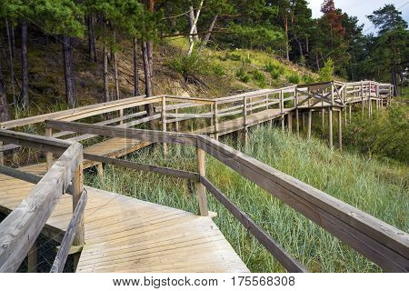 Wooden deck in the wood with observation decks. Latvia