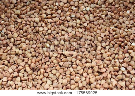 buckwheat texture. brown background. free-flowing. raw buckwheat.