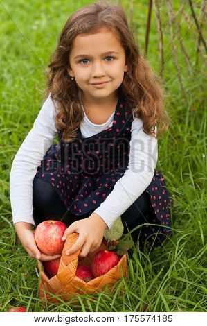 Cute Smiling Russian Six Year Girl Hold In Her Hand Fresh Ripe Red Apple In Summer Garden Outdoor. Harvesting Fresh Apples.