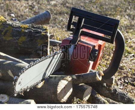Chain saw on the pile of cut logs. Close up.