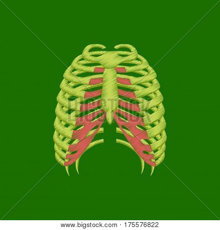 flat shading style icon on green background chest thorax