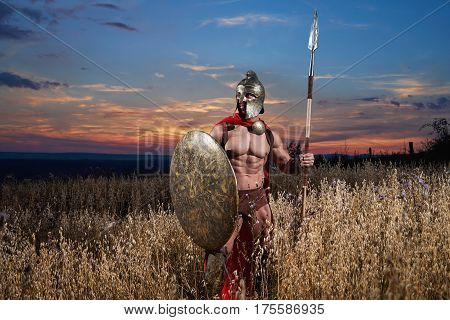 Medieval warrior in a battle dress holding his weapon and shield looking away posing in the field on beautiful sunset background with copyspace. Bravery concept.