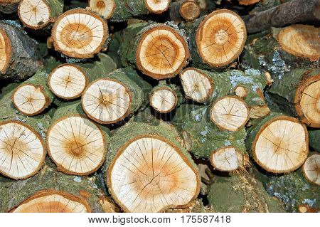 Stacked Log As Background