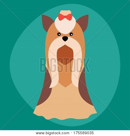 Funny cartoon dog character bread illustration in cartoon style happy puppy and yorkshire terrier isolated friendly mammal vector illustration. Domestic element flat comic adorable mascot canine.