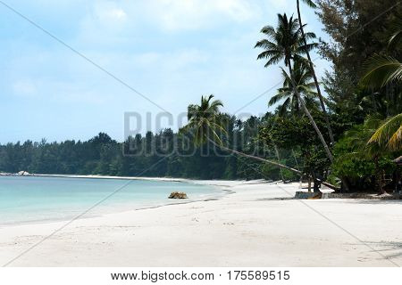 Tropical white sand beach and palm trees stretching out towards the blue colored ocean in the afternoon at Tanjung Pinang on Bintan island Indonesia.
