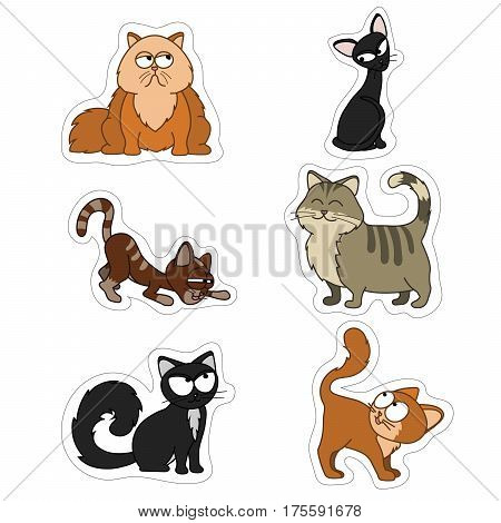 cartoon illustration of funny cats set.Fat skinny red black and tabby cats. Set of stickers of cute Pets