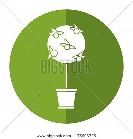 tree pot decorative garden shadow vector illustration eps 10