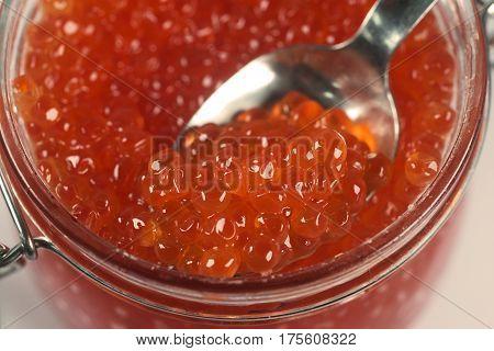Caviar of salmon fish species, such as: Pacific salmon - pink salmon, keta, sockeye salmon, coho salmon, Atlantic salmon, trout