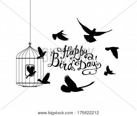 Happy Bird Day! Vector Card.