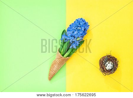 Hyacinth flowers in ice cream waffle cone with Easter egg on colorful background. Minimal flat lay