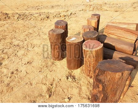 Real Brown Stumps .was Put On The Garden's Sand
