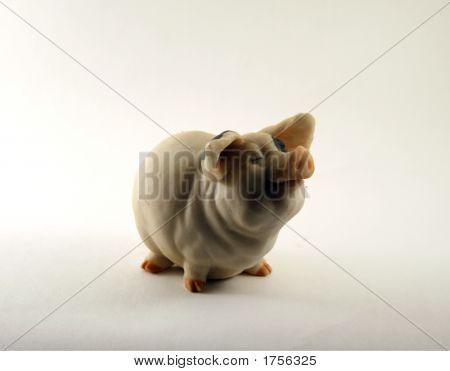 A Toy - A Coin Box A Pig