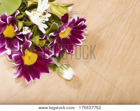 The beautiful flowers on a wooden background