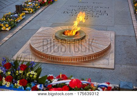 Unknown Soldier memorial flame under Arc de Triomphe in Paris France since 1921. Translation: A french soldier dead for the Nation