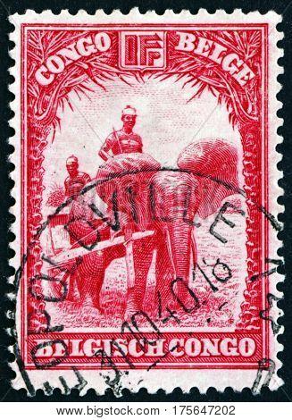 BELGIAN CONGO - CIRCA 1932: a stamp printed in Belgian Congo shows Domesticated elephant of Api circa 1932