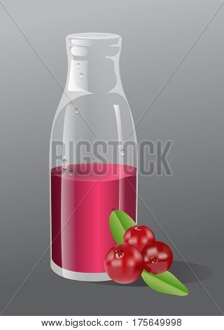 Vector cranberry juice in a glass bottle. Berries beside the bottle. Gray background