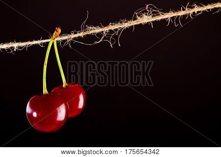 Red Cherry and rope on black with clamp fruit concept - desert, food