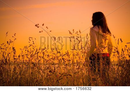 Evening_Walk