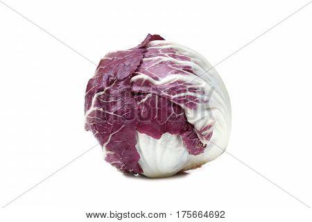 A Radicchio vegetable isolated on white background
