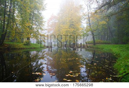 Autumn morning and the mist over the water in the Alexander Park in Tsarskoye Selo